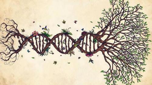 Biopolítica 4.0: De la gestión  a la transformación y producción de la vida