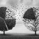 """La dictadura del relativismo: El """"derecho a decidir"""" contra el Bien Común"""