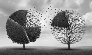 La dictadura del relativismo: El «derecho a decidir» contra el Bien Común