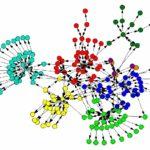 Redes sociales y su diseño político sin líderes de opinión
