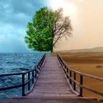 Combatir el suicidio, ese gran tabú de nuestro siglo, es una obligación